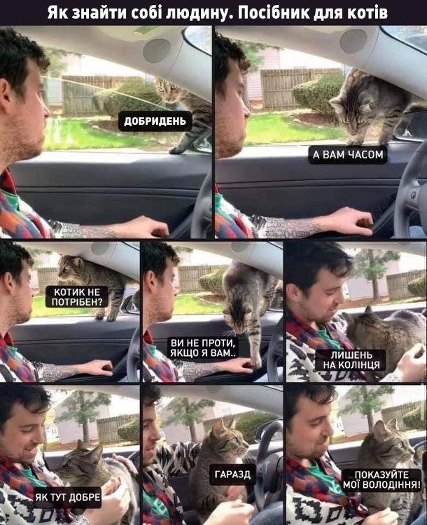 Прикол Чужий кіт заліз в машину. Як знайти собі людину. Посібник для котів. Кіт, залазячи у вікно автомобіля: - Добридень. А вам часом котик не потрібен?... Ви не проти, якщо я вам лишень на колінця (сів на коліна водію)... Як тут добре... Гаразд, показуйте мої володіння
