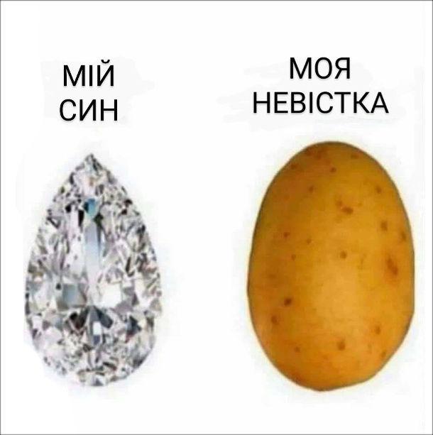 Мем Теща про невістку і сина. Мій син - діамант, моя невістка - картоплина.