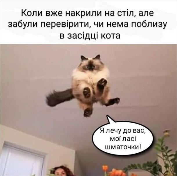 Смішна картинка кіт цибає на стіл.  Коли вже накрили на стіл, але забули перевірити, чи немає поблизу в засідці кота. Кіт: - Я лечу до вас, мої ласі шматочки!