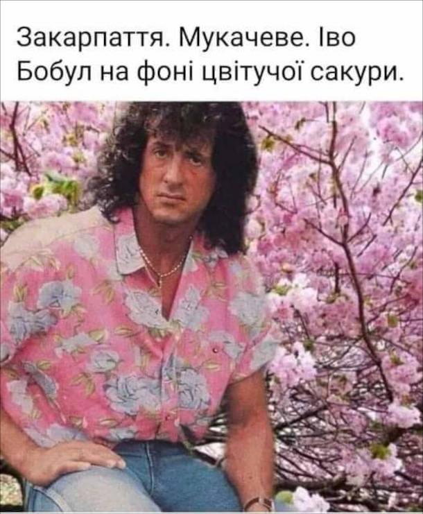 Прикол Сталлоне. Закарпаття. Мукачеве. Іво Бобул на фоні цвітучої сакури.