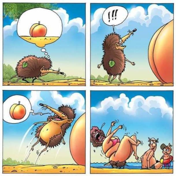 Смішний комікс Їжак і персик