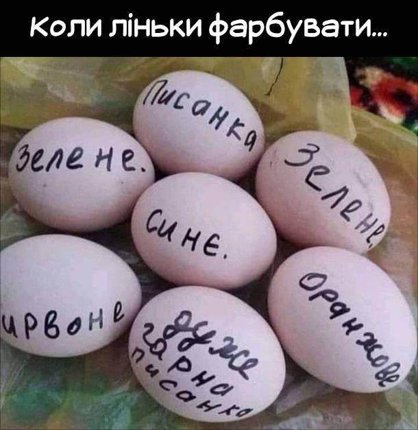 """Смішна картинка Писанки, коли ліньки фарбувати... Підписав яйця маркером: """"Писанка"""", """"Зелене"""", """"Синє"""", """"Червоне"""", """"Дуже гарна писанка""""..."""