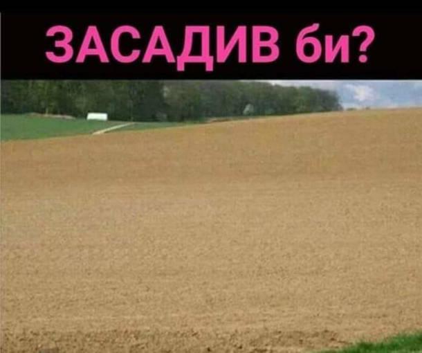 Мем Незасаджене поле. Засадив би?