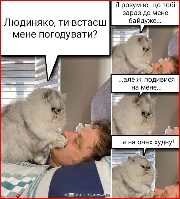 Мем Кіт вимагає їсти. - Людиняко, ти встаєш мене погодувати? Я розумію, що тобі зараз до мене байдуже... але ж подивися на мене... я на очах худну!