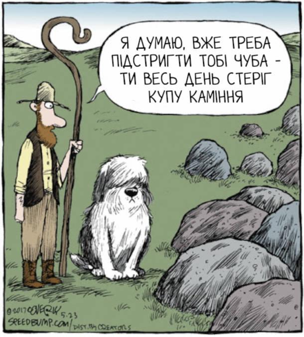 Смішна картинка про собаку вівчаря. Вівчар до собаки: - Я думаю, вже треба підстригти тобі чуба - ти весь день стеріг купу каміння.