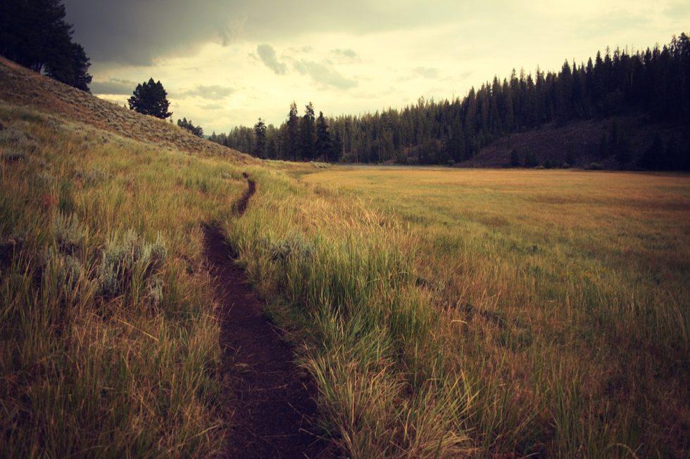 Dirt road, leave trail