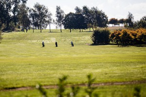 image of golfers