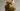 GASTEREAMAG-TONIC_PHOTOGRAPHY_PATRICIA_NIVEN_HARDIE_GRANT_FRESH_TURMERIC