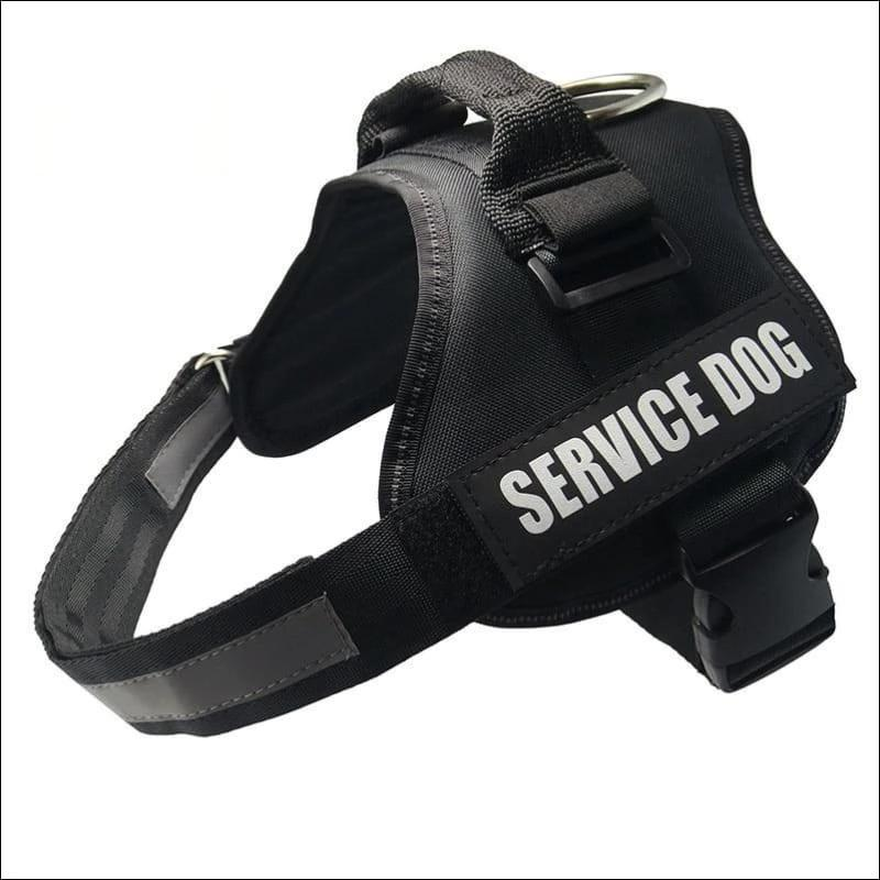 All-In-One No Pull Dog Harness - black / L - Harnesses