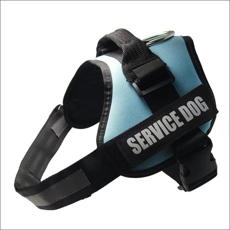 All-In-One No Pull Dog Harness - blue / L - Harnesses