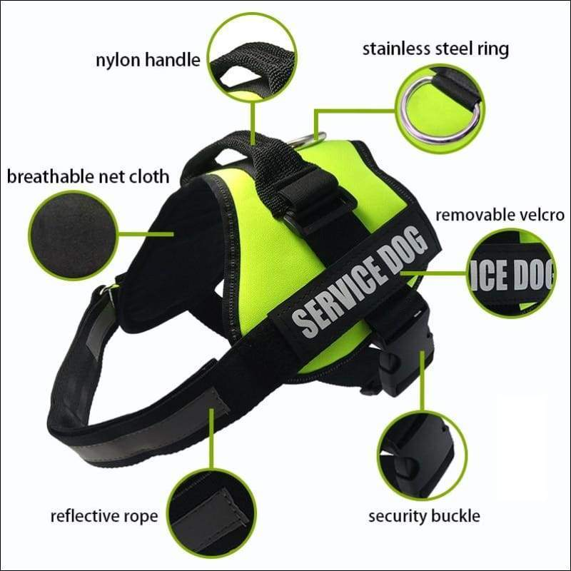All-In-One No Pull Dog Harness - Harnesses