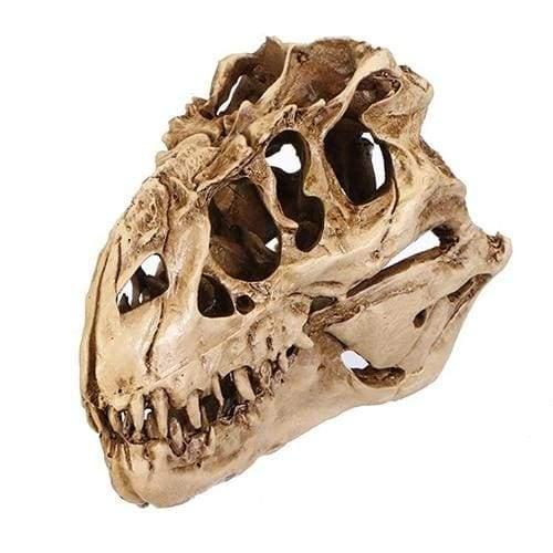 Amazing Dinosaur skull fossil model - Statues & Sculptures
