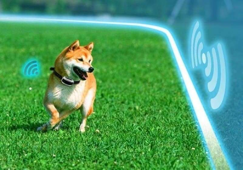 Electric Invisible Dog Fence - with 1 collar / EU Plug - Dog Accessories