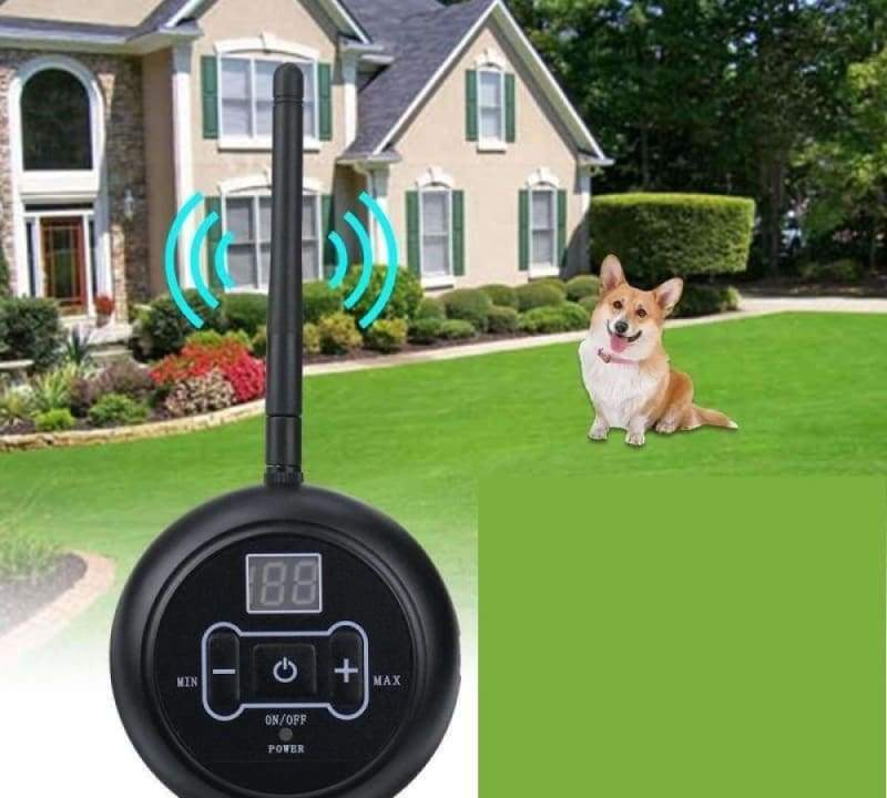 Electric Invisible Dog Fence Just For You - EU Plug - Dog Accessories