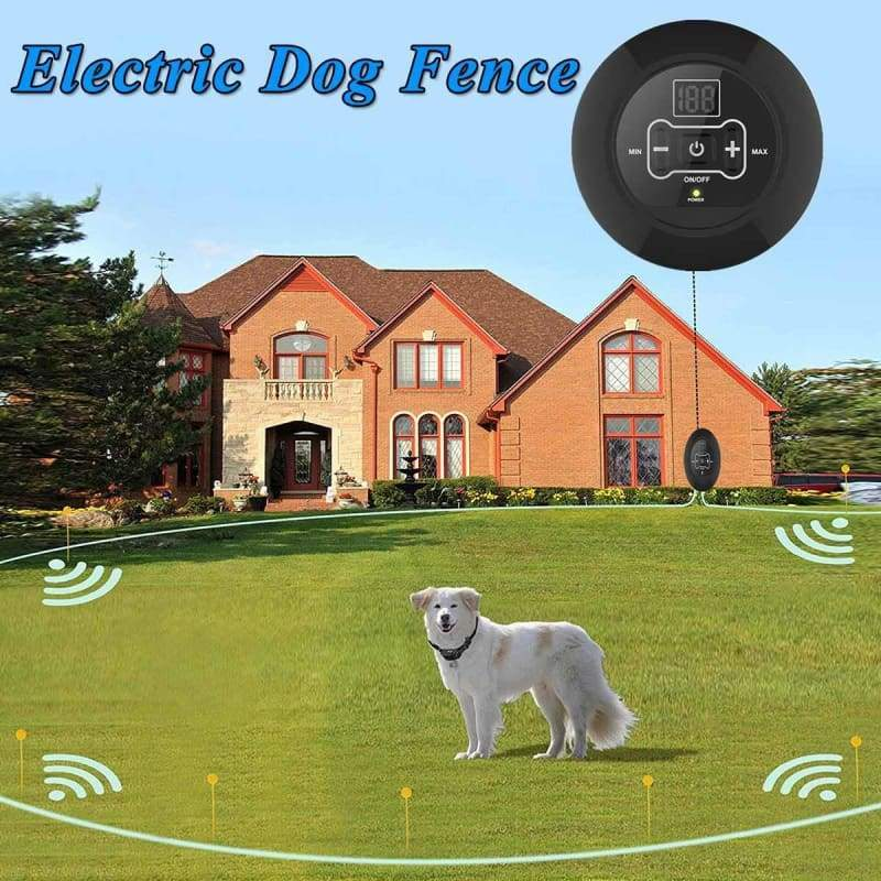 Electric Invisible Dog Fence Just For You - Dog Accessories
