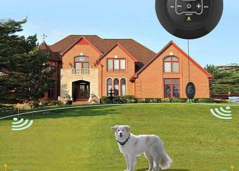 Electric Invisible Dog Fence Just For You - US Plug - Dog Accessories