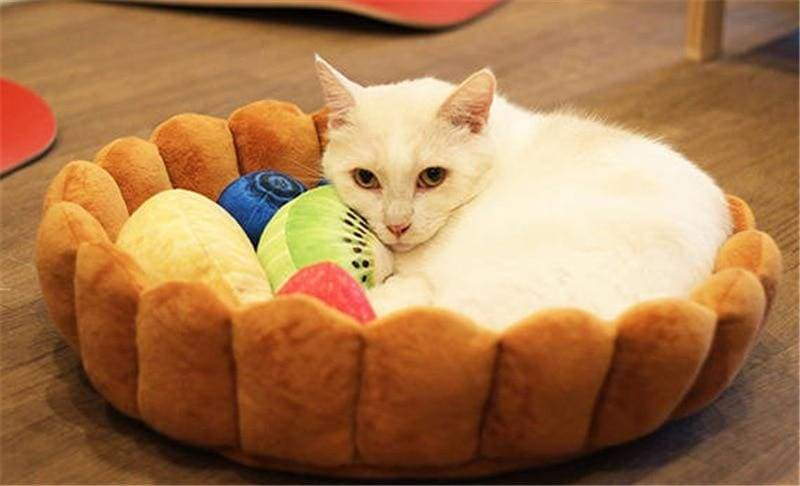 Fruit Tart Cat Bed Just For You - Houses Kennels & Pens