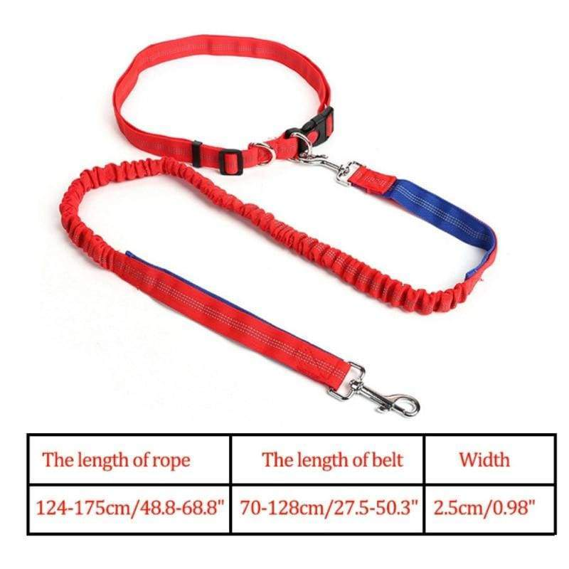Hands-Free Retractable Leash - RL / M - Leashes