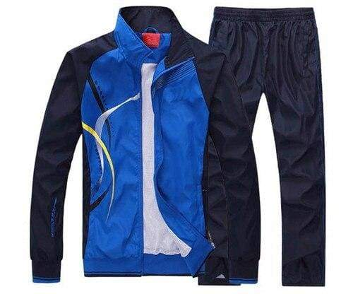 Men Sportswear Spring Autumn - blue / L - Sportswear