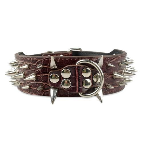 Spiked Studded Leather Dog Collar - Brown / S - Collars