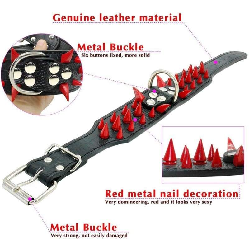 Spiked Studded Leather Dog Collar - Collars