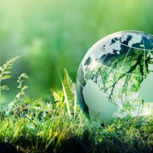 Protecting-the-environment
