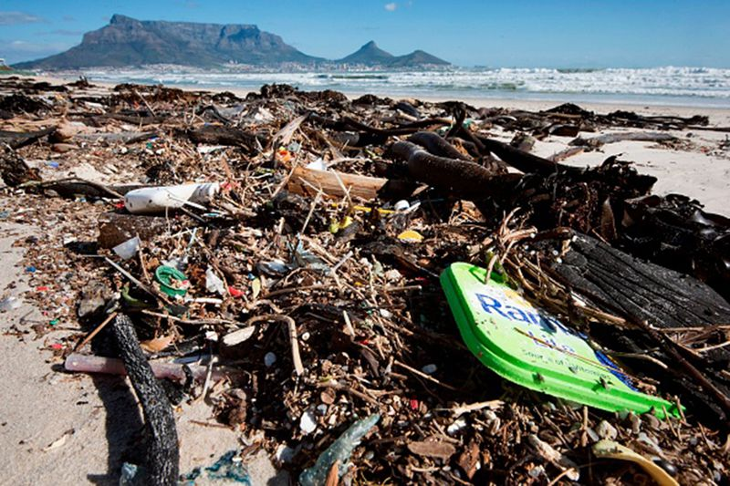 Effects-of-plastic-on-oceans