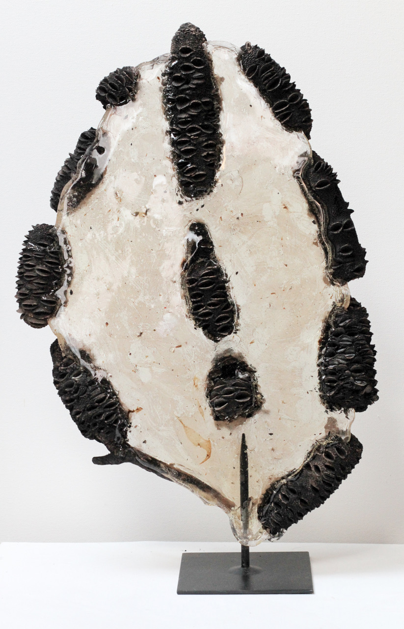 Burnt Banksia Puddle (2020) Burnt banksias and glass wax 50 cm x 33 cm x 12 cm