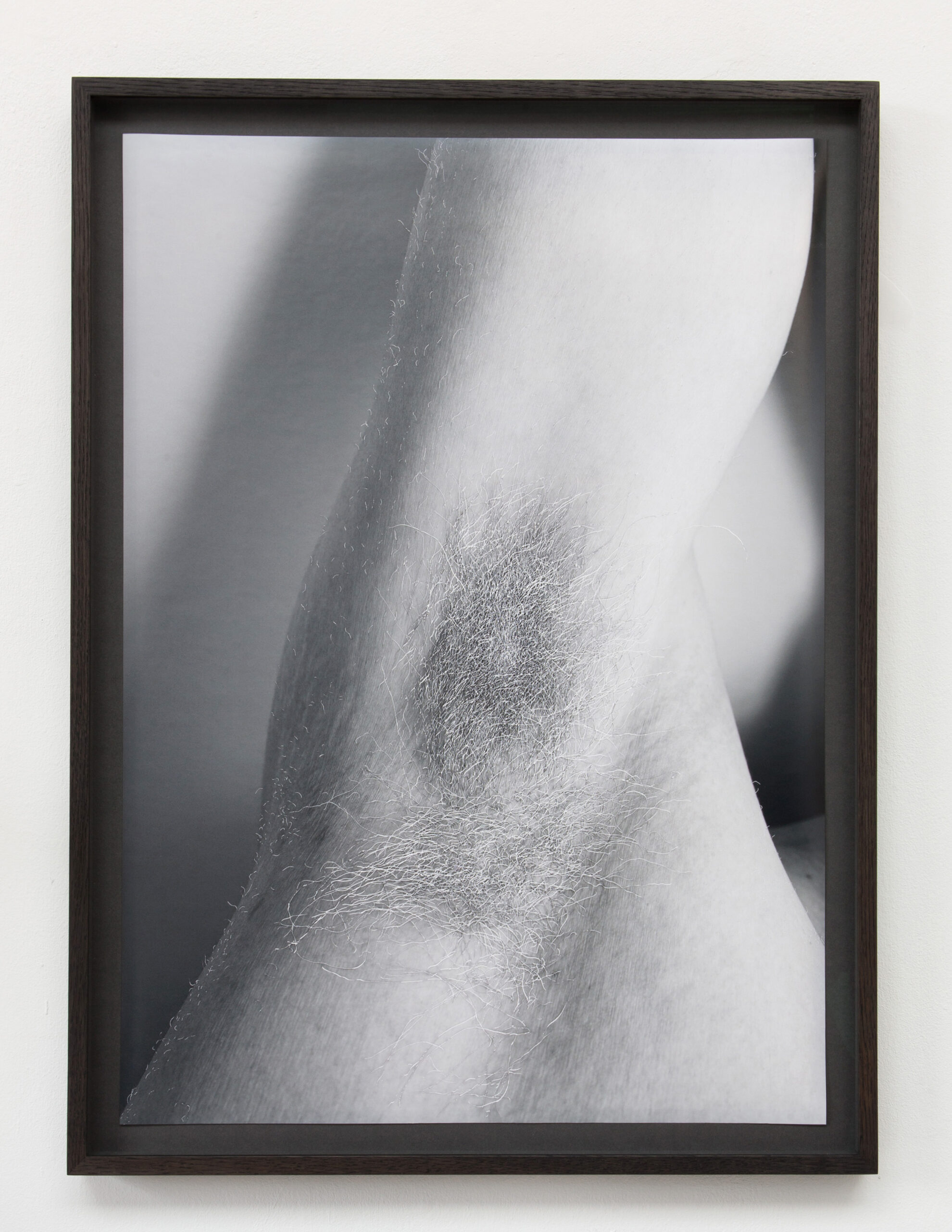 William Mackrell Axilla (2021) Etching on C-type print, 70 cm x 50 cm Float mounted, framed UV glass