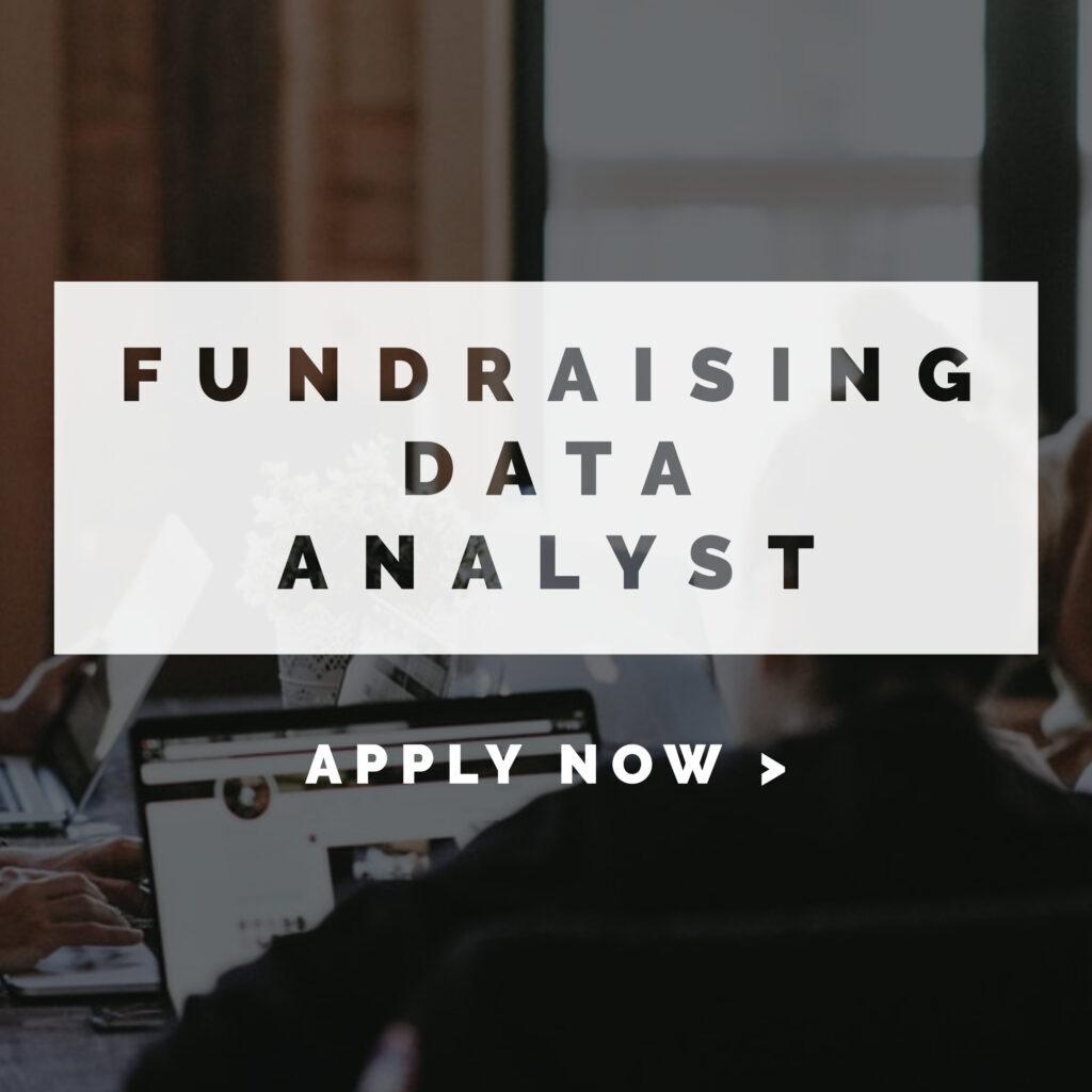 Empleo de Analista de Datos - Fundraising