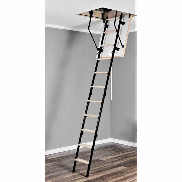 Hybrid Ladders