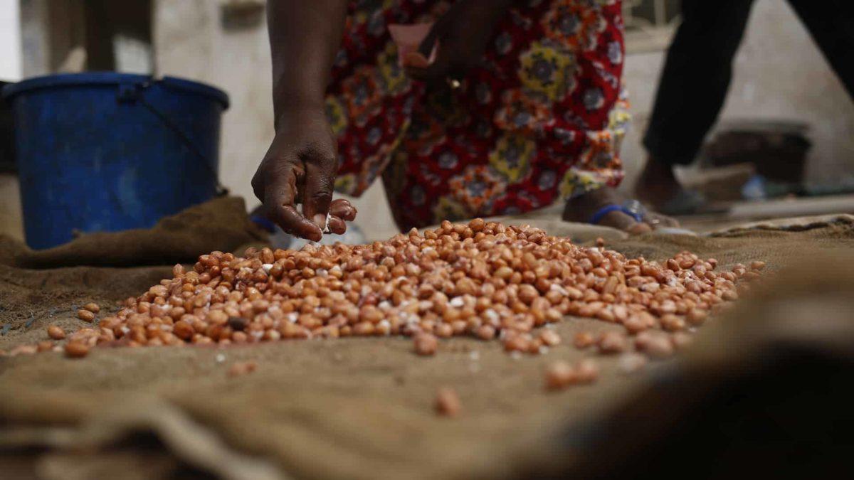 africa cibo cinefood documentario estero filmmaker gastronomia Senegal street food video videomaker