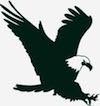 Swift Eagle Charitable Foundation
