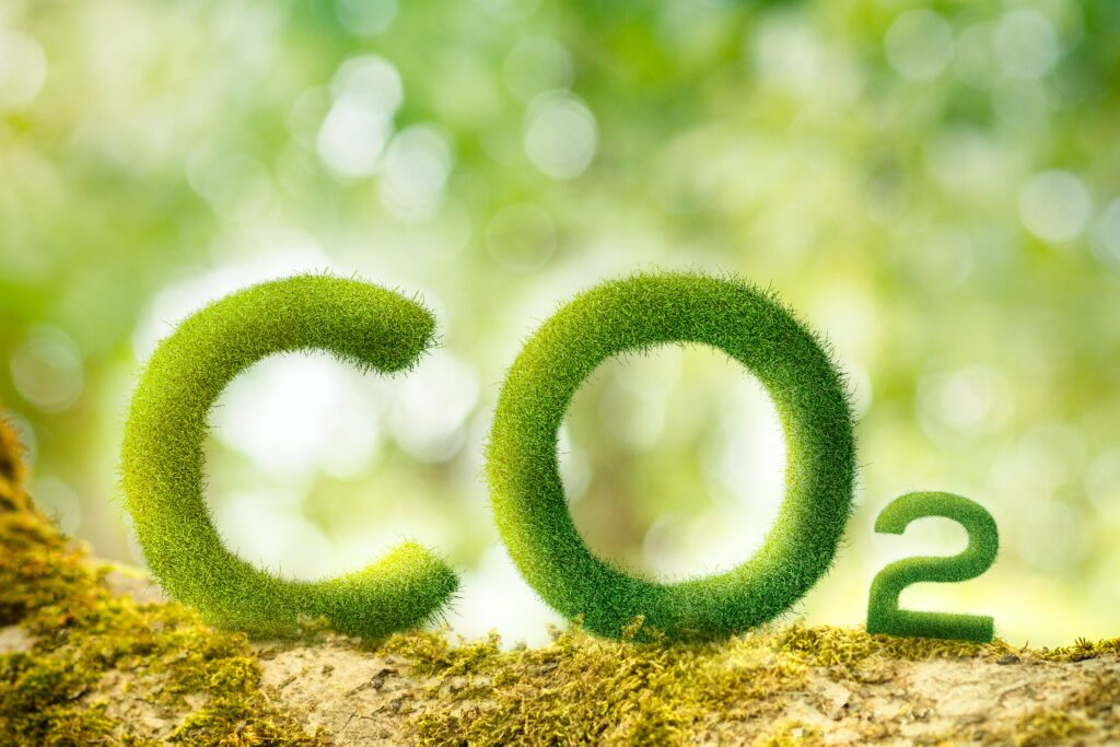 CO2 Icon Environmental Travel