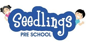 Seedlings preschool Baner