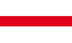 Logo - Rossignol