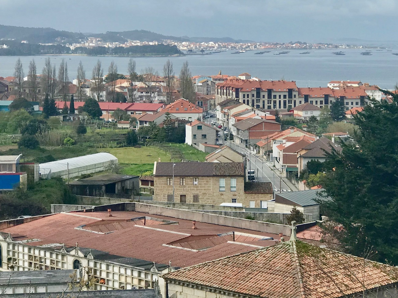 View of Cambados mussel farm barges galicia spain photo art travel