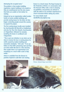 Swifts article page 2