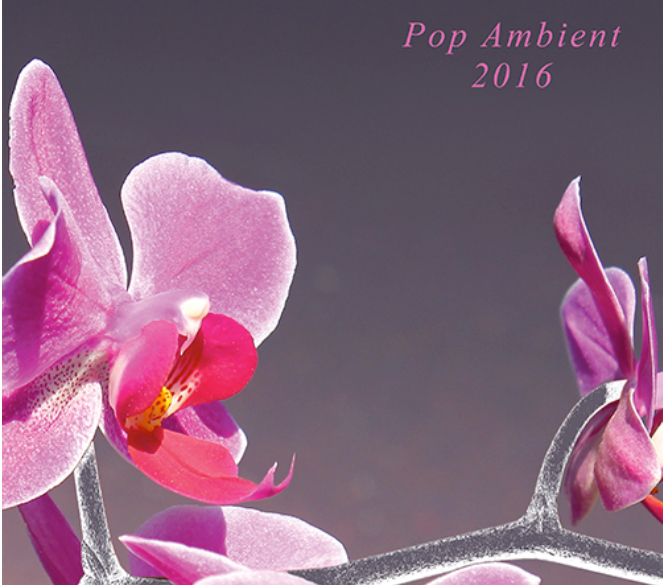 POP_AMBIENT_2016_Cover