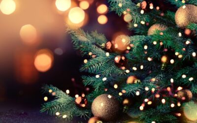 Christmas Supperclub Dinner Event (Monday 6th December)