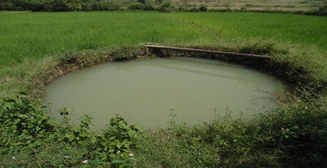 In Jharkhand, Using an Old Technique for Sustainable Water