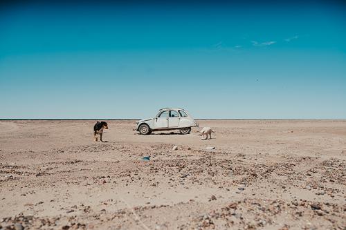 Las Grutas (Argentina) (16)