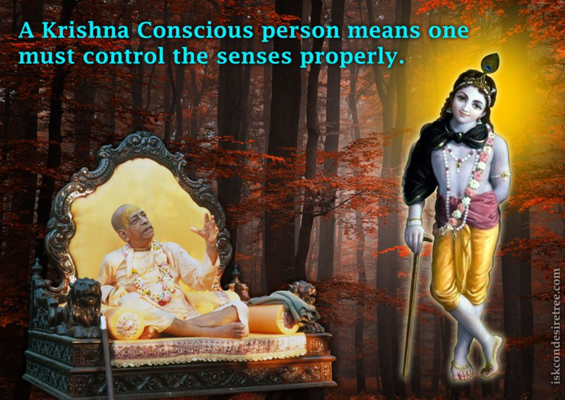How to control the senses by Krishna Consciousness?