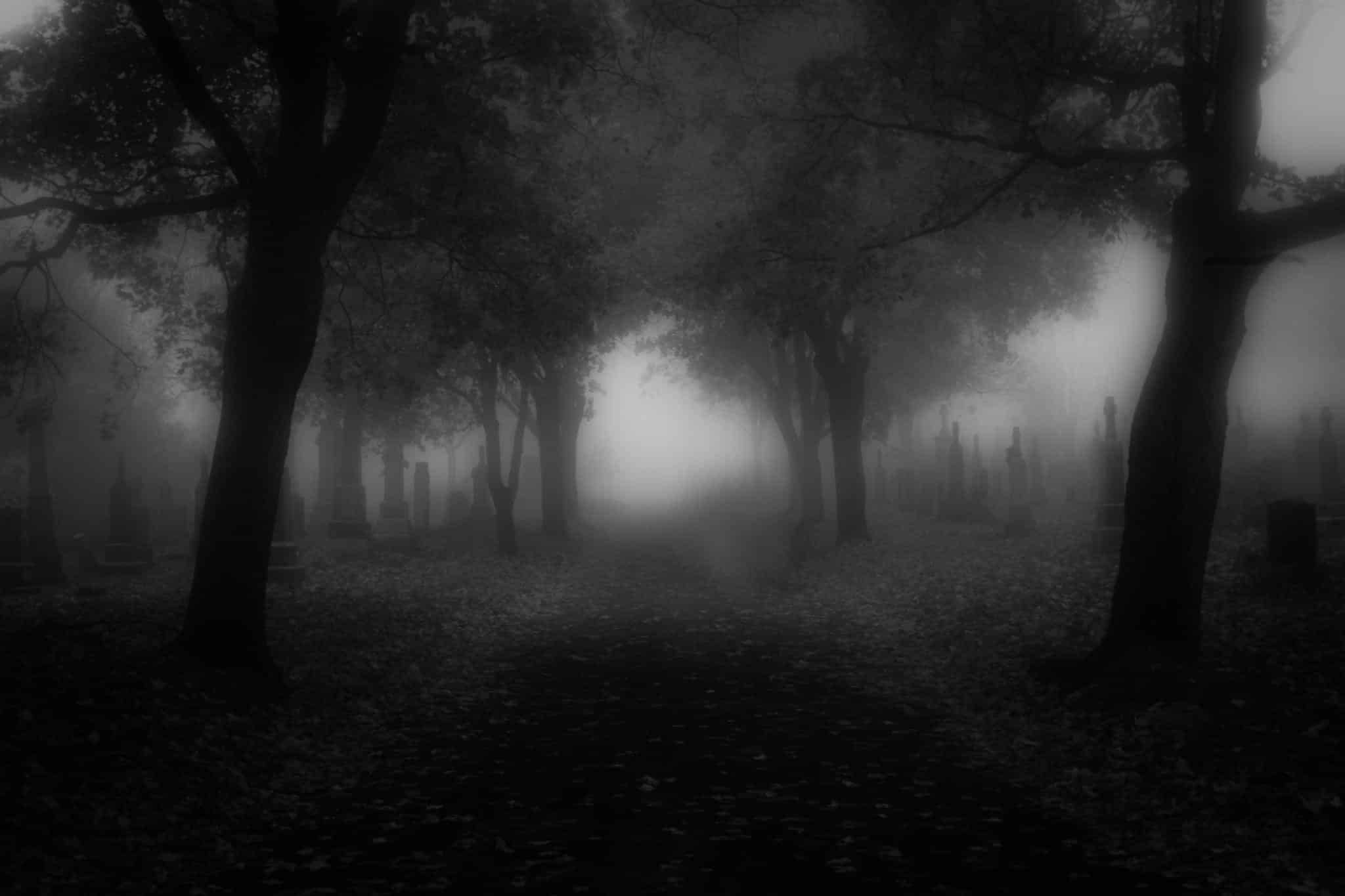 आदतें - Aadetein, Mist in Forest