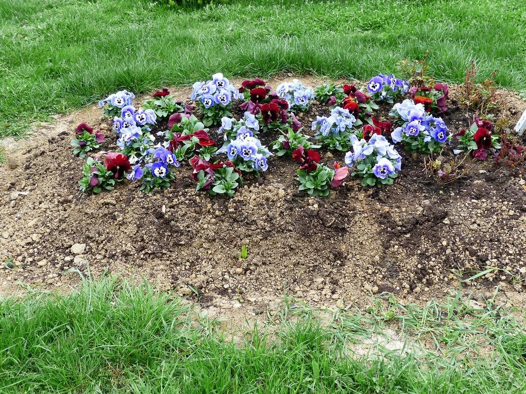 यादों के खुशनुमा फूल , flowers on grave