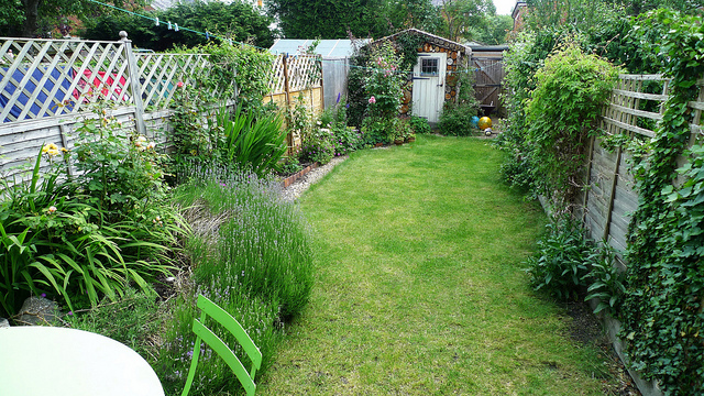 Beautiful grass, bushes and trees in a lush and green garden which is maintained by regularly cutting the grass and removing weeds.