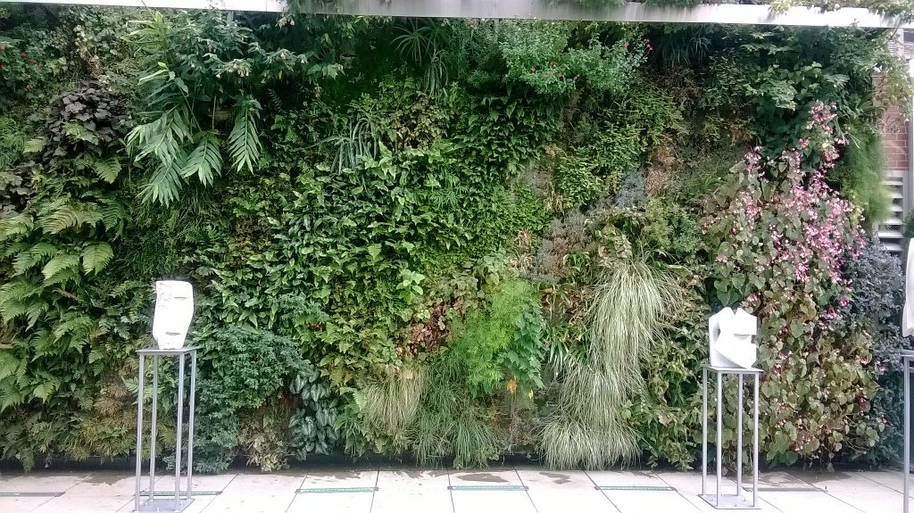 Long vertical garden with green bushes and flowers.