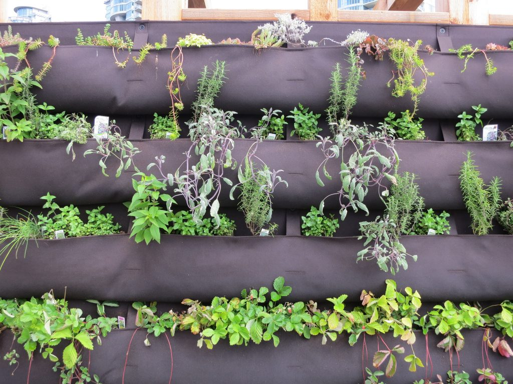 Florafelt system for vertical gardening with growing green flowers.