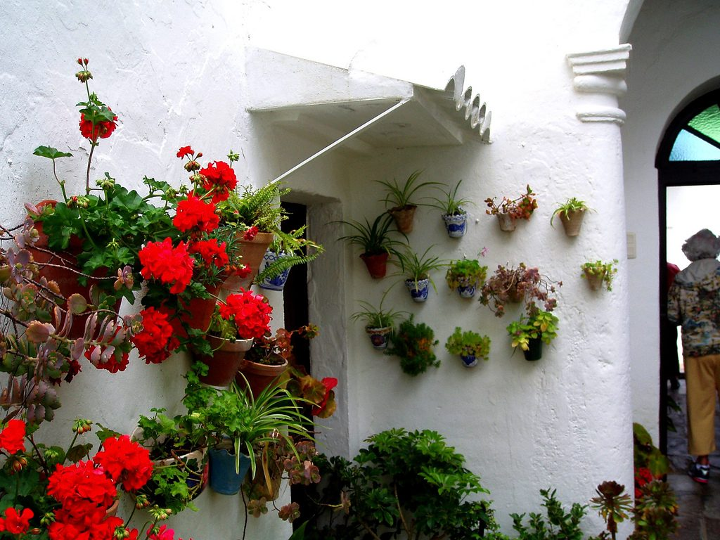 Hanging pots with colorful flowers for a vertical garden on the walls of a white house.