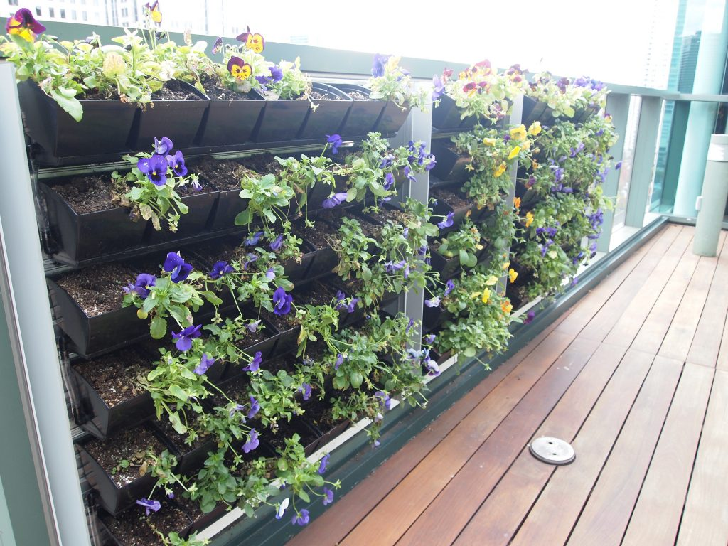 Vertical garden with violets and other flowers on a balcony.